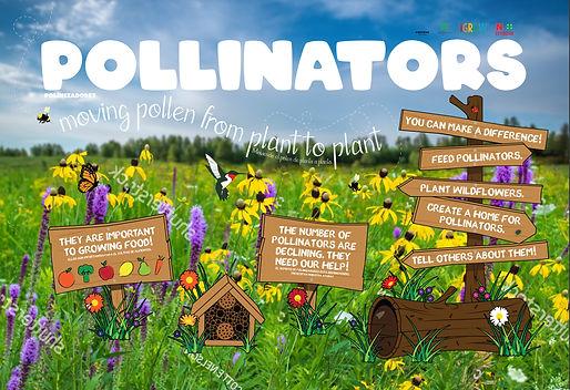 iGROW_Pollinator-Display_060719.jpg