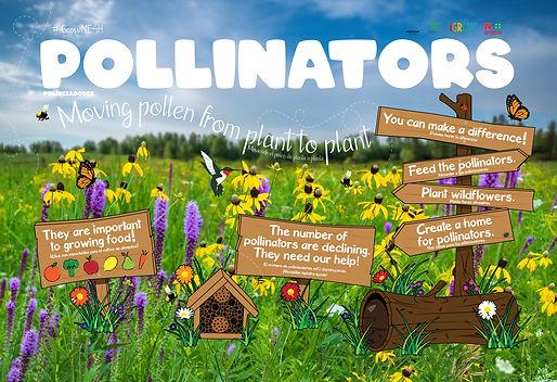 iGROW_Pollinator-Display_062519.jpg