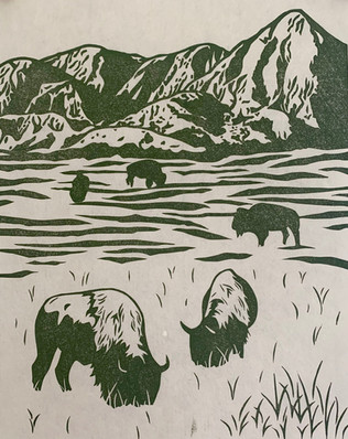 Where the Bison Roam Too