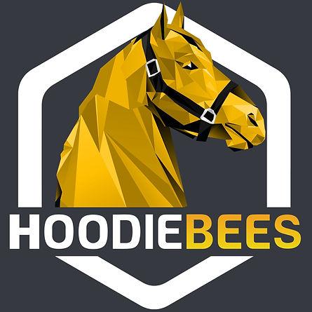 hoodiebees-zed-run_edited.jpg