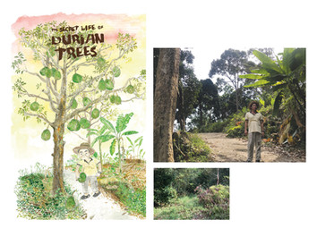 Site visit and reseach for animation - The Secret Life of Durian Trees.
