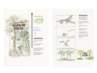 Storyboard for animation - The Secret Life of Durian Trees.