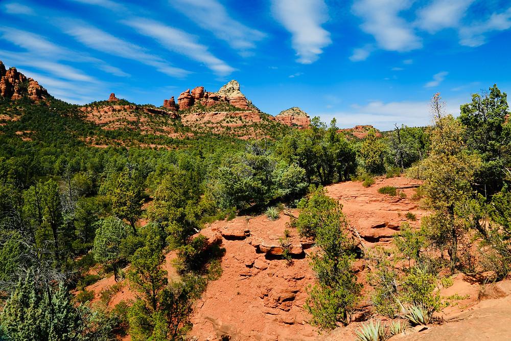 Sedona, travel, spring, travel, red rocks, Arizona, cactus, hike, Brins Mesa, trail, desert, landscape