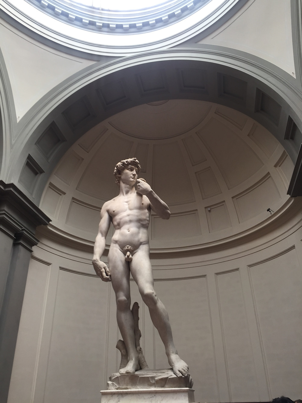 Michelangelo's David in the Accademia Gallery in Florence Italy