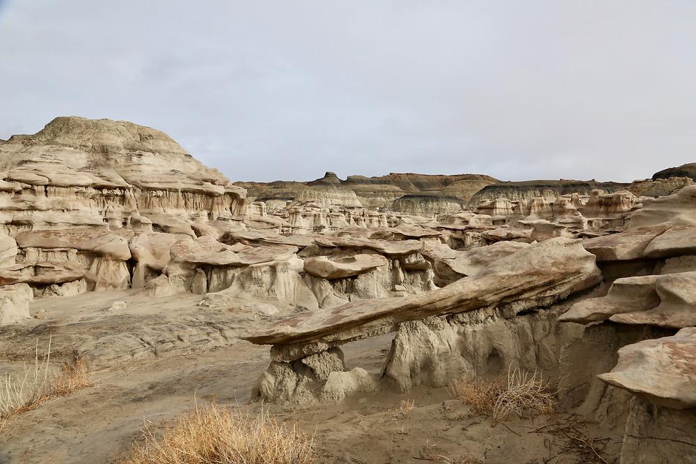 Bisti Badlands, Farmington, New Mexico