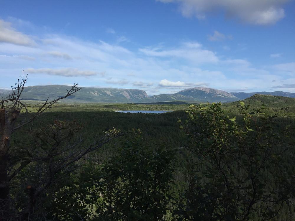 road trip, East Coast, Canada, summer, Newfoundland, Gros Morne, Berry Hill