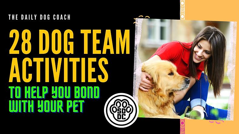 28 Dog Team Activities.png