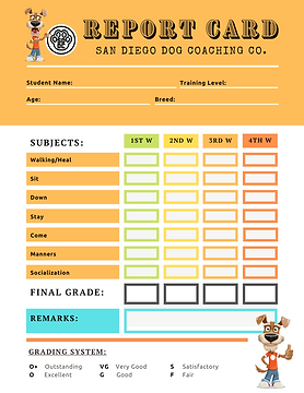 SDDC Report Card Template.png