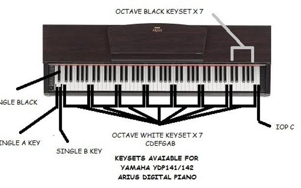 YAMAHA  Arius (YDP) Keys