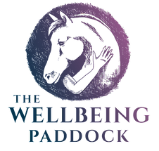 The Wellbeing Paddock png_edited.png