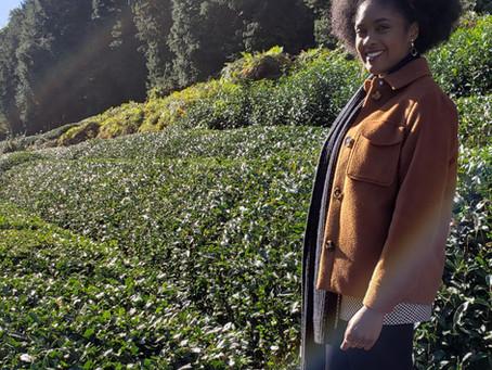 A trip to the Matcha Farm