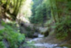 sortieMEA2011-18.jpg