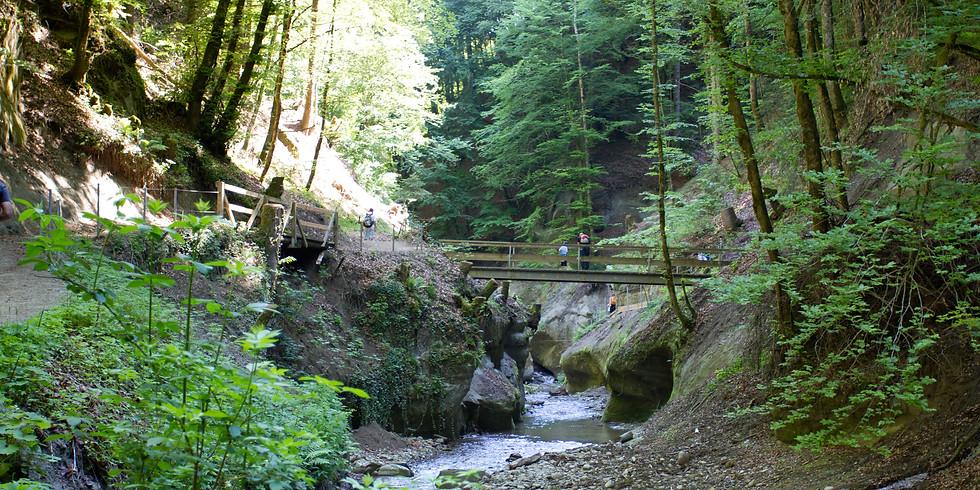 Randonnée photographique - Les gorges du Gottéron