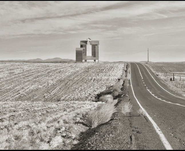 Dennis Galloway - Waterville Plateau, WA #2