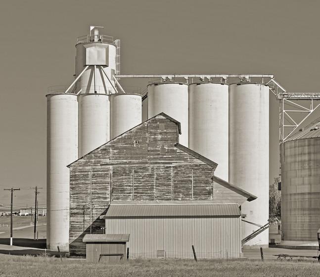Dennis Galloway - Waterville Plateau, WA #4