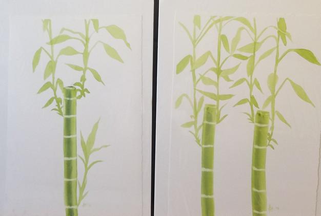 Bamboo 1, 2