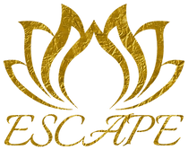 Escape Gold Foil Logo (3).png