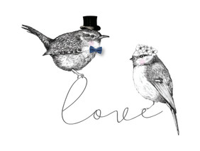 Love birds x