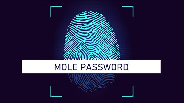 Mole Password is modeled after the reality show of the same name. Contestants' names were entered on a screen and have their fate revealed with a red or green screen. This is more of a fun toy used to display if a password has been entered in correctly (or incorrectly.) Set the password easily on the first slide, and you're set! If you want the correct password to display a green screen, just swap Slides 2 and 3. You can even change the sounds linked on the two shapes near on the first slide, and set the delay for a dramatic and suspenseful reveal!