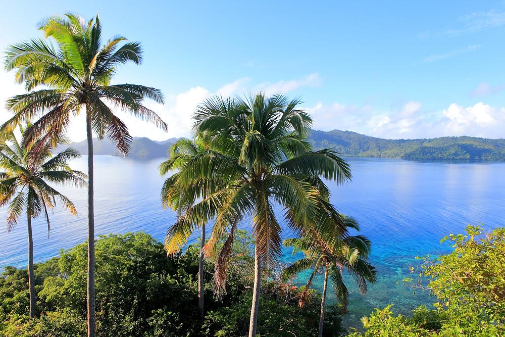 Matangi Island Resort