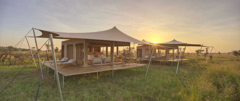 Roving Bushtops   Tanzania   Luxury Safari Packages