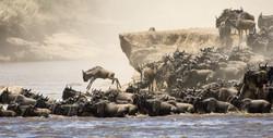 Africa Safari tours