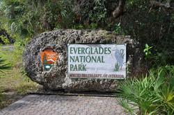 everglades tour | florida