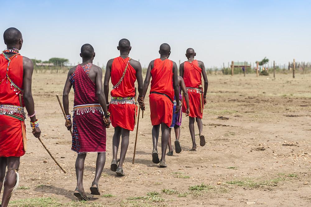 Masai Mara safari africa