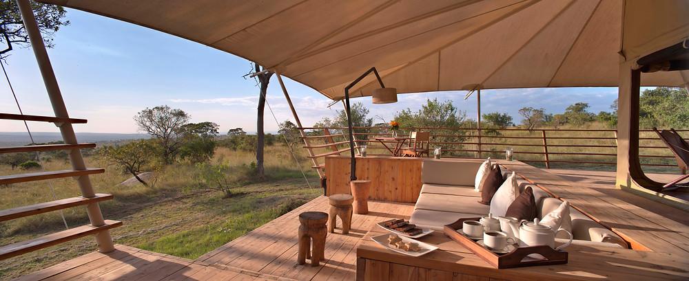 Safari Africa Serengeti Bushtop