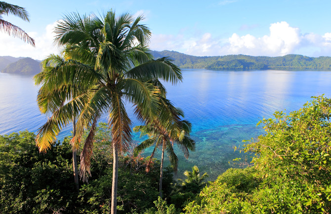 Top 10 Things You Need to Know About Matangi Private Island, Fiji.