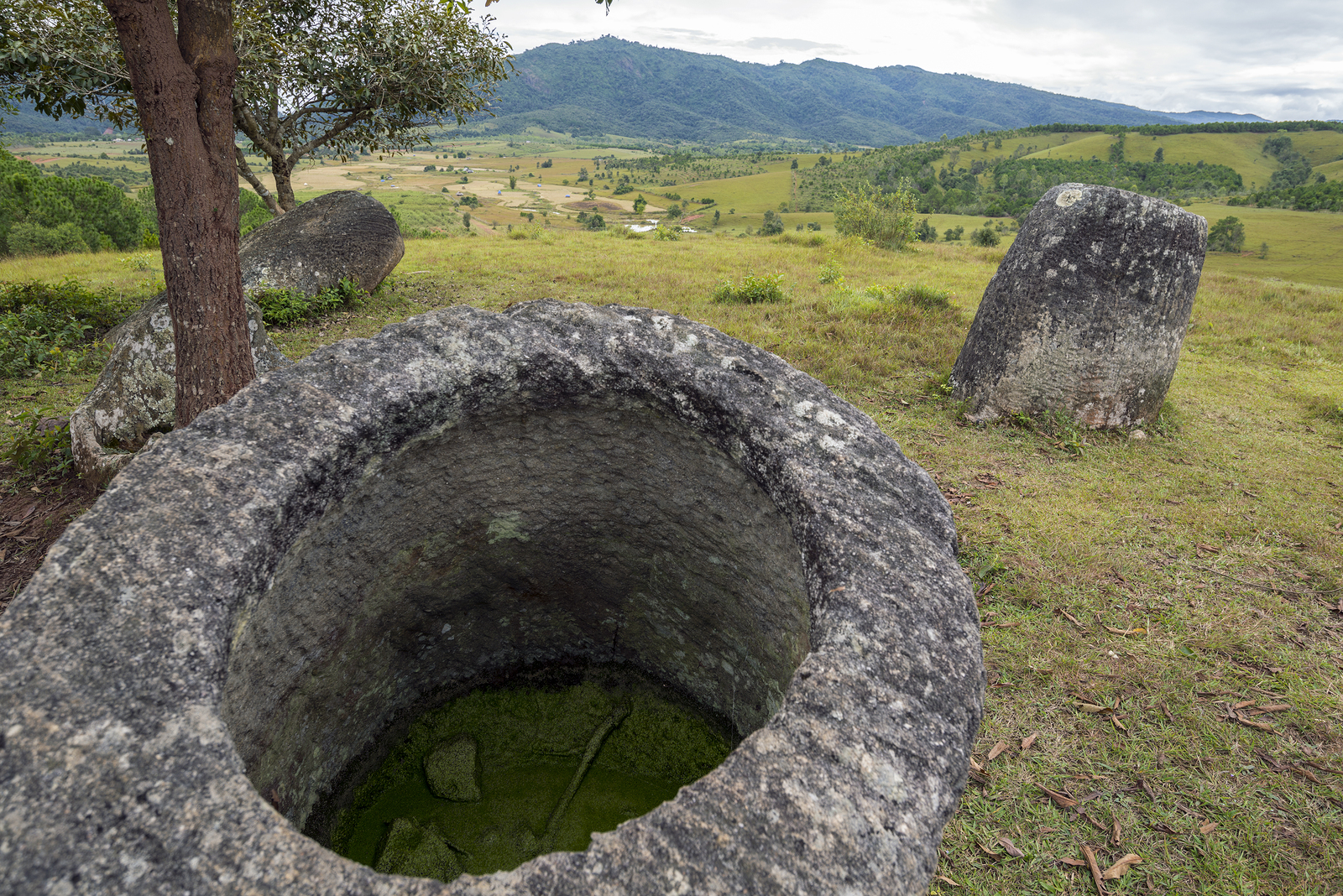 Plain Of Jars Phonesavanh Laos Asia