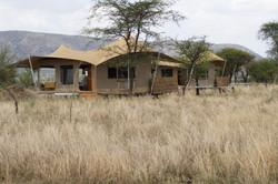 Roving Bushtop african safari