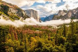 Yosemite accommodation | EHabla