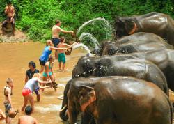 Patara Elephant Farm Ehabla Travel