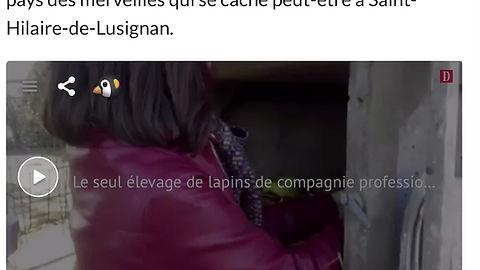 Intervieuw Presse LA DEPECHE DU MIDI 2020