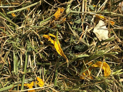 Tisane a croquer Camomille - Fleurs de tournesol