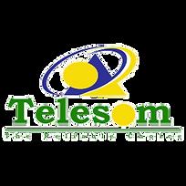 telesom_logo-1.png
