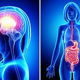 gut-brain-connection.jpg