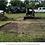 Thumbnail: Landscaping