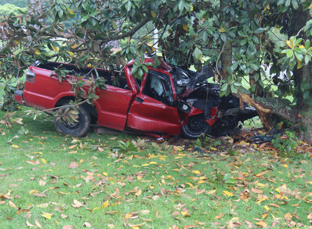 Lyerly man injured after crashing into tree on Mahan Road in Chattooga County