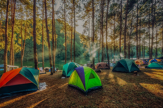 Camping and tent under the pine forest  in sunset at north of Thailand_edited.jpg