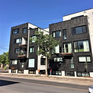 Verdun, Montréal - Kanva Architecture - Reptile Finish