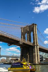 Brooklyn bridge.   New York   2019