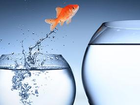 5 dicas de como preparar sua transição de carreira