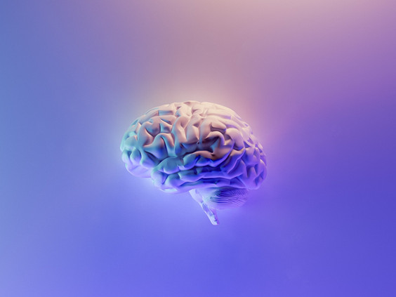 Como a inteligência emocional age no cérebro