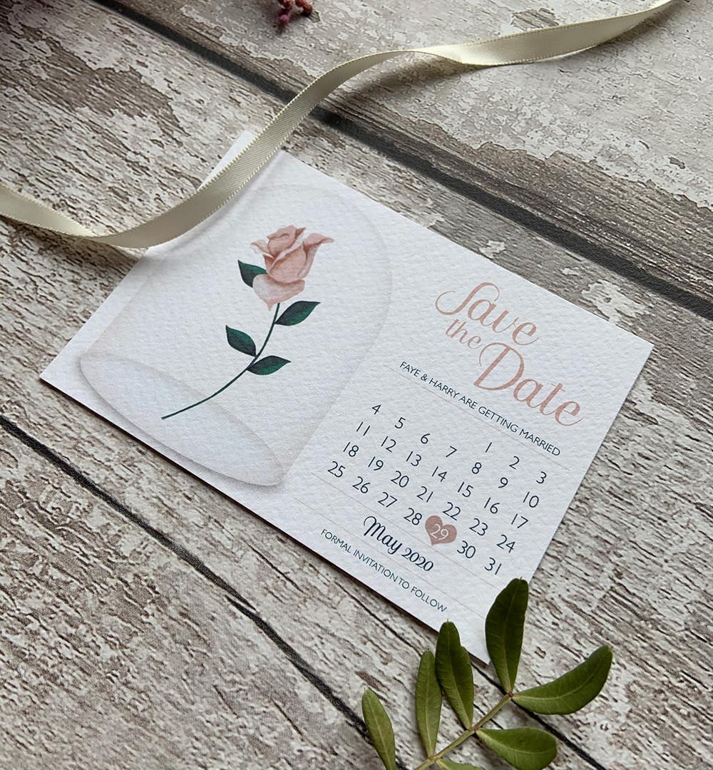 blush-rose.jpg