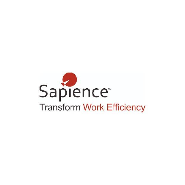Sapience.jpg