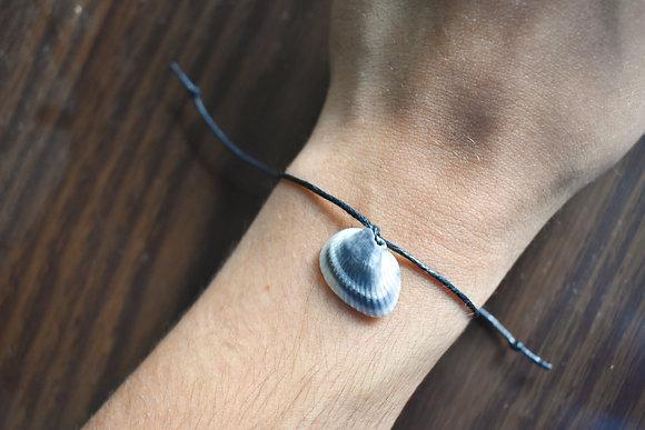 Coquina Shell Bracelet