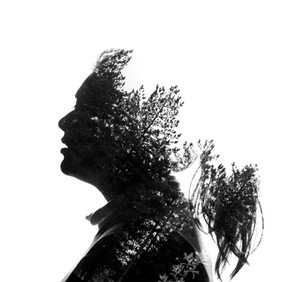 Silhouette Tree Double Expo 1.jpg