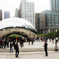 The Iconic Bean